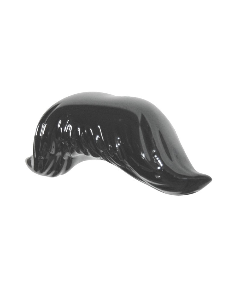 Agatatoare mustata Appendino - Antartidee