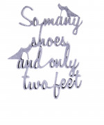 mesaje despre pantofi