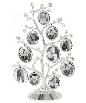 rama foto arborele genealogic