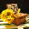 cosuri de picnic 2 persoane