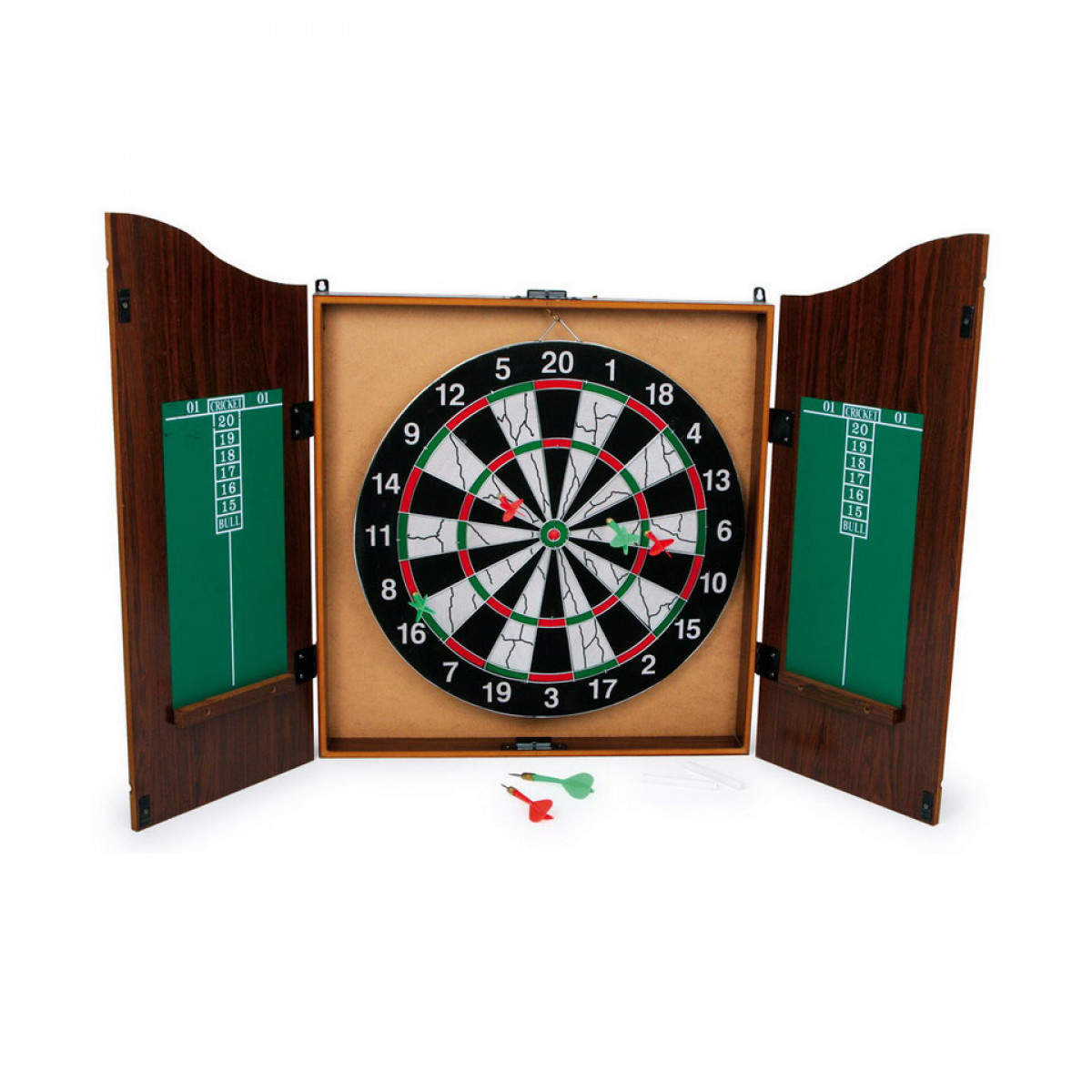darts profesional